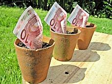 Een goede ondernemer laat geld groeien.Geld